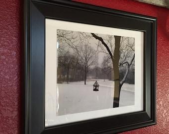 Winter Feeder, Photograph, birds, winter, nature, frame, black, white