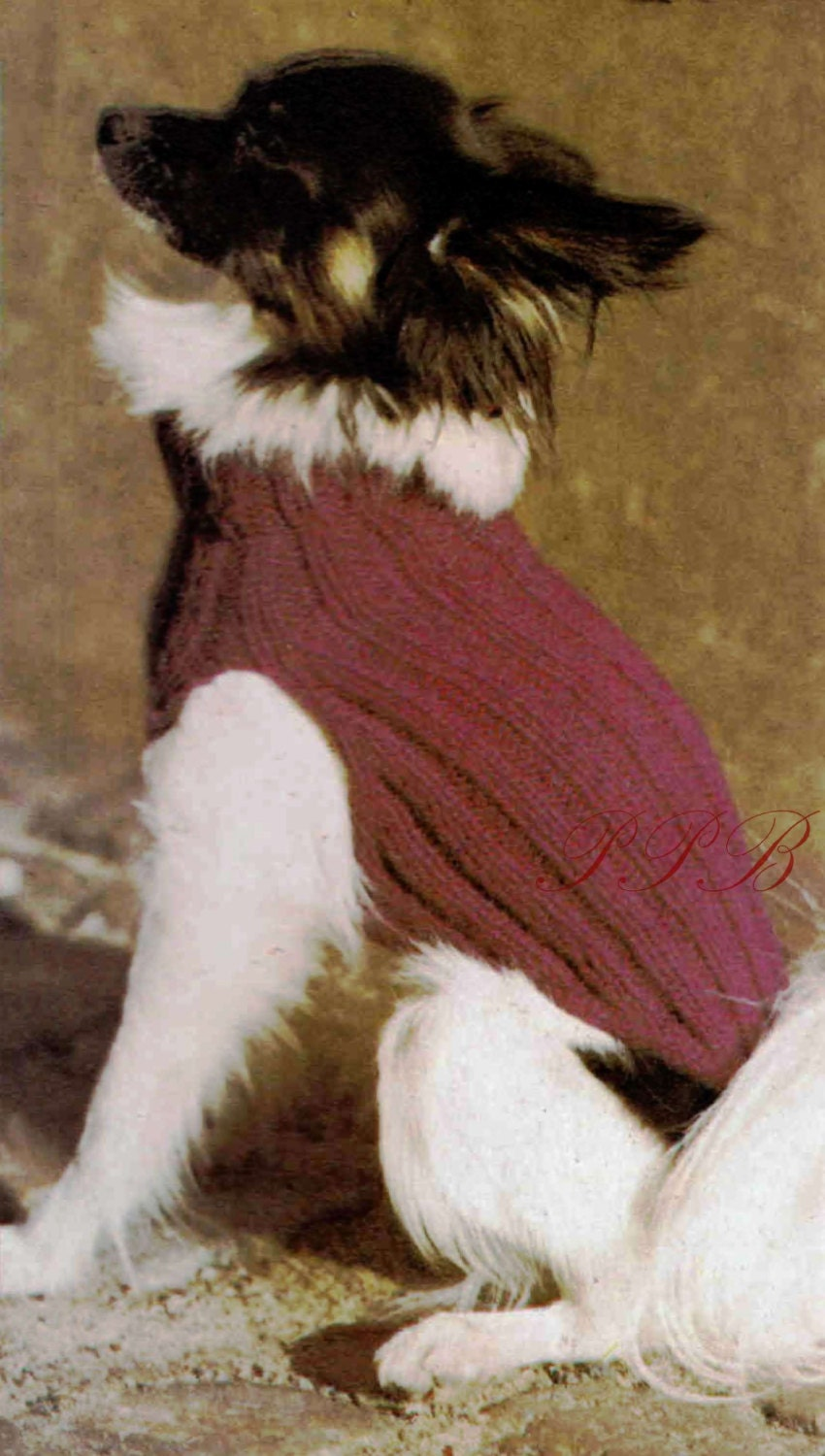 Knitting Coats For Dogs : Knitted dog coat small pattern pdf knitting