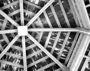 Wooden Web: Black and white structural photo