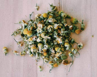 Organic Camomile Flower Brew  teabelly Artisan Herbal Tea Chamomile Tisane Infusion