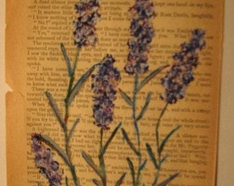 Antique Lavender 2