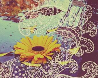 Unfurling Flower (Photography Print)