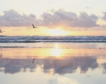 Sunset Birds Photo Pastel Sunset Beach Print California Photo Cloud Wall Art Beach Reflection Seagull Photo Calming Bedroom Art Peace Photo