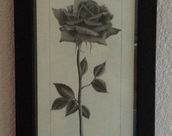 ORIGINAL drawing - Long Stem Rose - KacieArtGallery