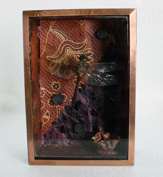 Dragon Fly Diorama / Shadow Box