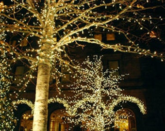 32ft 100 LED Solar Fairy String Lights For Wedding Outdoor, Gardens,  Christmas Party,