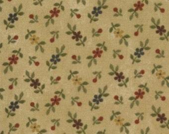 Fabric / Quilting Fabric / Kansas Troubles Favorites / Tan / Moda 9054 11