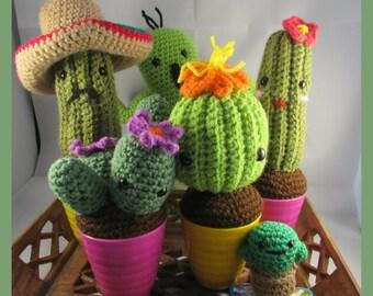 Amigurumi Cactus (crocheted succulent)