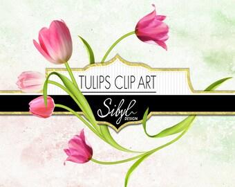 60% OFF SALE, Digital Tulips Clipart, Spring Flower Clip Art, Floral Elements Clipart, Tulip Diy Clipart, Digital Scrapbooking Flowers, PNG