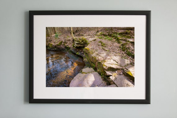 A Stroll Through The Woods Color Wall Art Photograph Framed