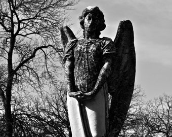 Wheatherd Angel