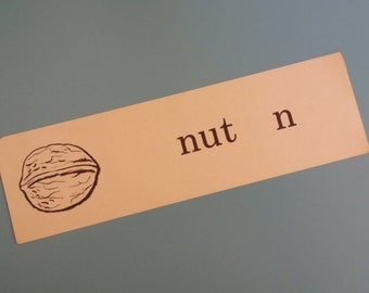 Vintage Illustrated Flash Card - nut