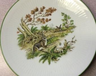 Bareuther Waldsassen Collector Plate Bavaria Germany Woodland Animal Bunny Rabbit SALE