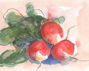 Original, Watercolor Painting of Radishes