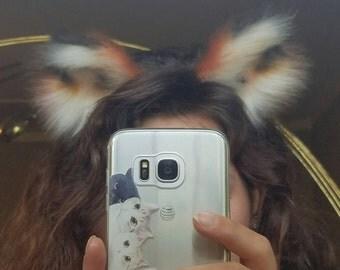 Medium sized fox ears