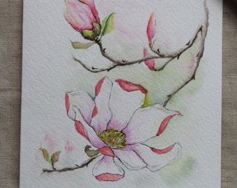 Pink Magnolia Watercolor Painted Card- Prints only
