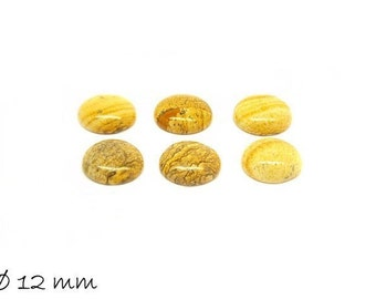 2 PCs cabochons, yellow Jasper, 12 mm