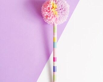 Multi Coloured Pom Pom Pencil Stripe