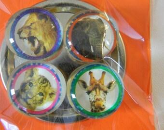 Set of 4 glass tile magnets, magnet, animals
