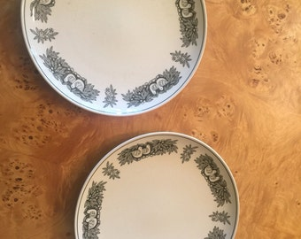 Pair of Vintage Franciscan Whitestone Ware dinner plates