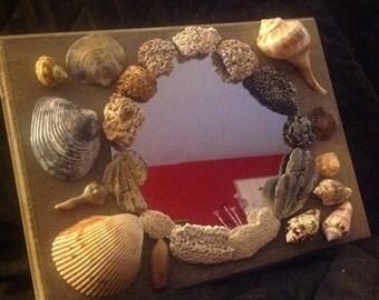 Shells & Mirror