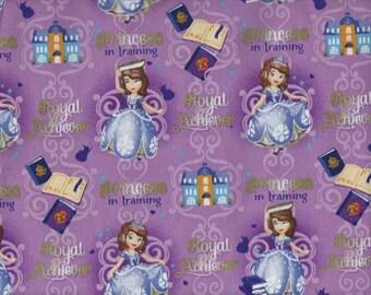 Princess Fabric...Disney Princses on purple quilt fabric.