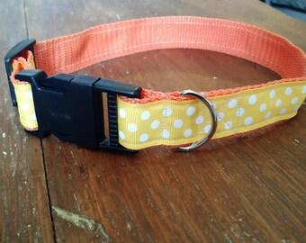 Medium 18 inch yellow with white polka dots and orange collar