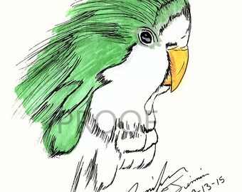 Little Green Bird