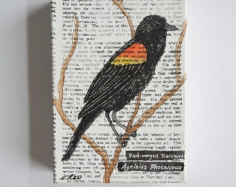 Red-winged Blackbird Newsprint Canvas Painting