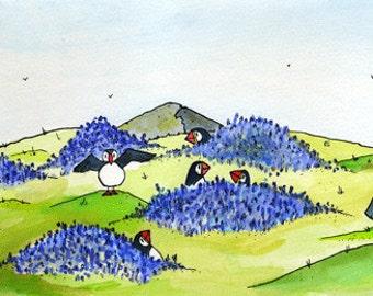 Puffin's on Skomer Island