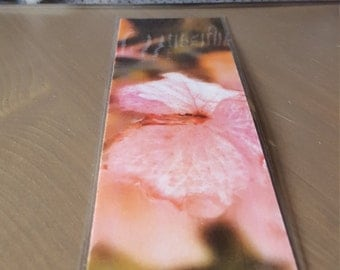 Focused Pink Flower - Bookmark