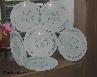 6 plates flat veronica arcopal model forget-me-not, dinner flat model forget-me-not, french vintage