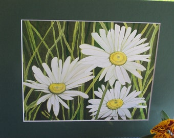 "Original watercolour ""White Daisies"""