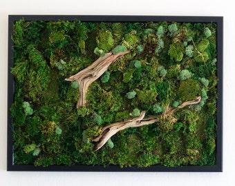 """Moss Wall Art ~ Moss Art Work ~ REAL Preserved Moss ~ No Maintenance Required ~ 29""""x21"""" ~ """"Drifting"""""""