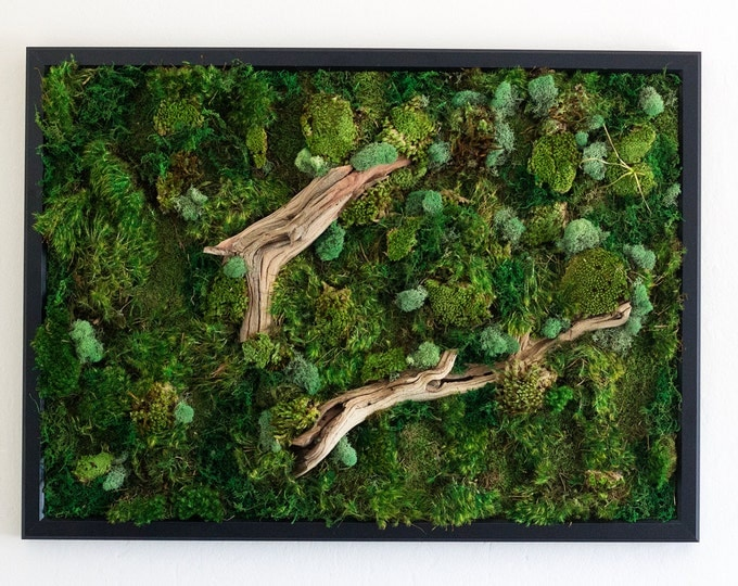 "Moss Wall Art ~ Moss Art Work ~ REAL Preserved Moss ~ No Maintenance Required ~ 29""x21"" ~ ""Drifting"""