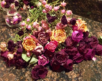 Single Dried Roses and Mini Rose Stems