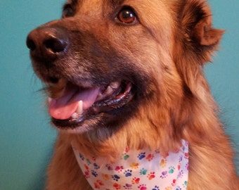 Paw Print Over-the-Collar Dog Bandana
