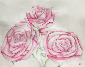 Watercolour Painting of Roses
