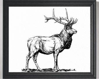 Elk Print, Elk Art, Deer Print, Deer Art, Woodland Wall Art, Rustic Art Print, Lodge Decor, Cabin Art, Hunter Gift, Man Cave Wall Decor