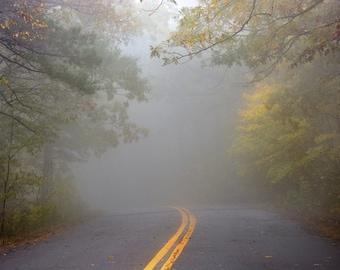 Mysterium Tremendum, Road Photography, Tree Photography, Fog Photography, Fine Art Photography