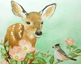 Doe and Titmouse