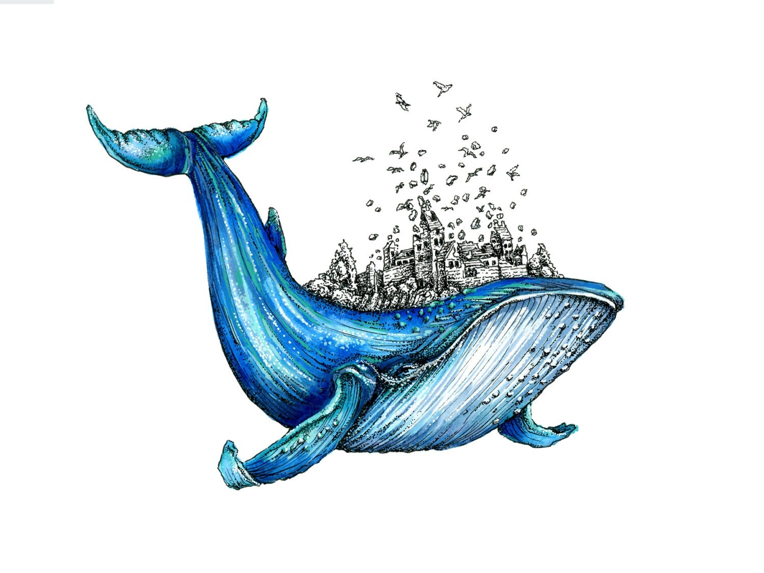 Uncategorized Blue Whale Pictures To Print blue whale art print watercolor pen and ink illustration