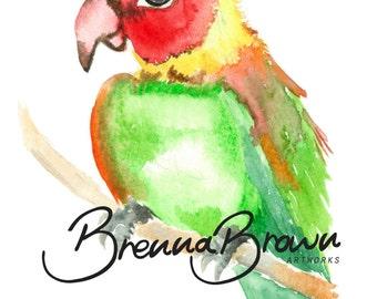 Parrot Nursery Watercolour Print