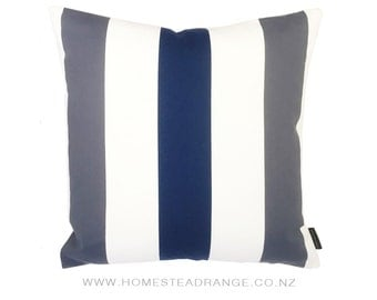 Blue Steel Cushions