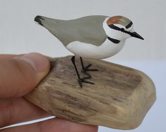 Kentish plover - Charadrius alexandrinus - hand carved and hand painted wooden shorebird