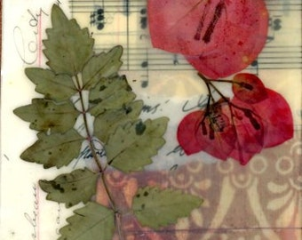 dried flower art, mixed media art, small art, country chic, nature collage, wall hanging, encaustic art