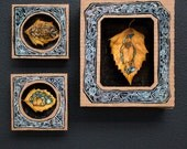 natural collection - Shadow Box