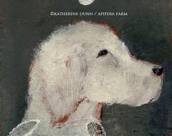 White Moon Series-White Dog