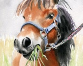 Shetland Pony Miniature Art Print of a watercolor Painting Big Large Huge Girls Horse Lover Gift Equine Equestrian Nursery decor