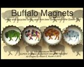 Four Seasons Buffalo Magnets - Full Set - Buffalo Art - Bottle Cap Magnets - Gift Set of 4 -  Buffalo NY - Buffalove - Buffalo Gift